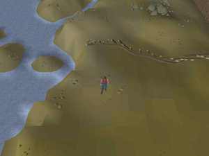 Hot cold clue - outside Rellekka fence.png