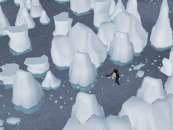 Penguin Agility Course (1).png