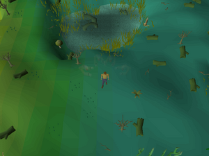 Hot cold clue - Mort Myre Swamp.png