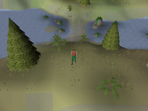 Hot cold clue - south Dragontooth Island.png