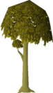 Diseased Oak (stage 3).png