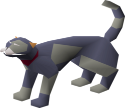 Overgrown cat (grey and blue).png