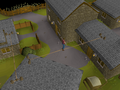 Draynor Village Rooftop Course (3).png