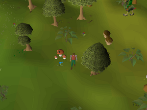 Hot cold clue - south of the Tree Gnome Stronghold.png