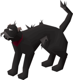 Wily cat (black) pet.png