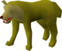 Jungle Wolf (historical).png