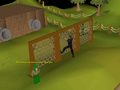 Gnome Stronghold Agility Course (6).png