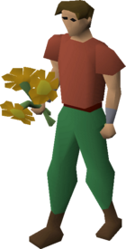 Orange flowers equipped.png