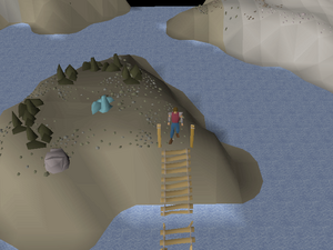 Hot cold clue - neit rune rock.png