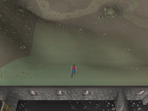 Hot cold clue - north of Warriors Guild.png
