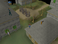 Varrock Rooftop Course (7).png