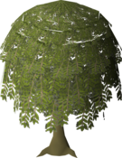 Willow Tree (stage 6).png