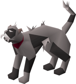 Wily cat (grey and black) pet.png