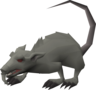 Blessed giant rat (1).png