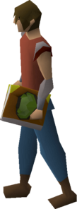 Cruciferous codex equipped.png