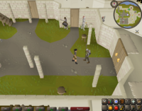 Cryptic clue - talk squire falador.png