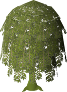 Diseased Willow (stage 7).png