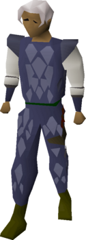 Blue Dragonhide Body Equipped