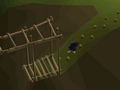 Ape Atoll Agility Course (4).png