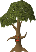 Ent (Tree, double canopy).png
