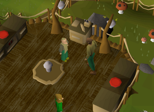 Grand Tree Groceries - OSRS Wiki
