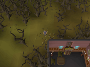 Hot cold clue - Draynor Manor.png