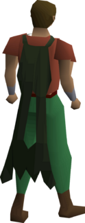 Lunar cape equipped.png