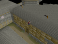 Varrock Rooftop Course (5).png