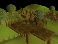 Gnome Stronghold Agility Course (5).png