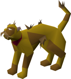 Wily cat (brown) pet.png