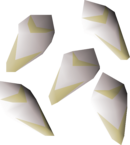 White lily seed detail.png