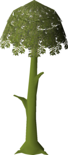 Diseased Willow (stage 3).png