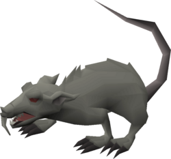 Giant rat.png