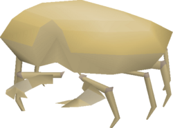 Sand Crab Osrs Wiki