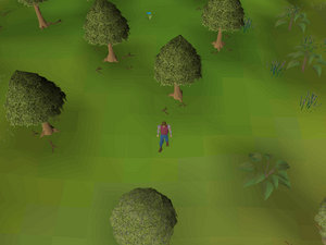 Hot cold clue - near Witchaven.png