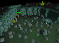 Chambers of Xeric - chests room.png