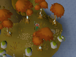 Emote clue - beckon crystalline maple trees.png