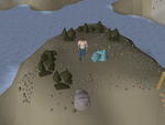 Emote clue - jump neitiznot rocks.png