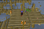 Emote clue - dance fish platform.png
