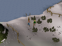 Cryptic clue - talk to Miner Magnus.png
