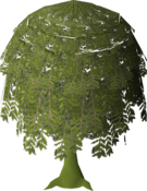 Diseased Willow (stage 6).png