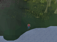 Cryptic clue - Dig next to the fish.png